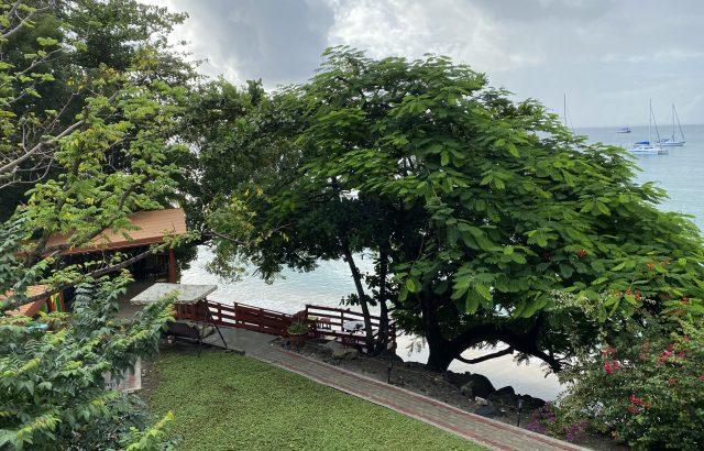 Star Fruit – Balcony view 1