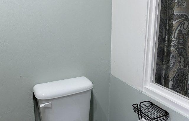 Star Fruit – Bathroom toilet