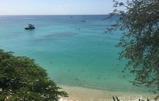 Property – Guest kayaking