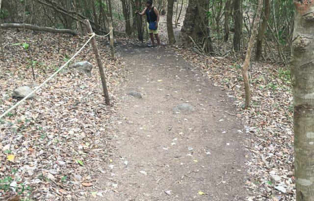 Hike trail_1
