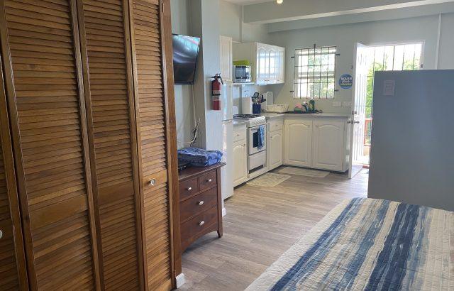 Flamboyant – Kitchen view