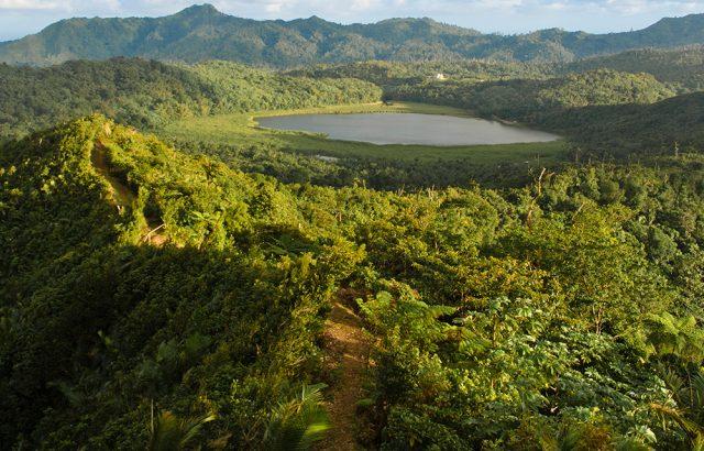 Credit to Orlando-Romain-Grand-etang.jpg Mt. Qua Qua trail (1)