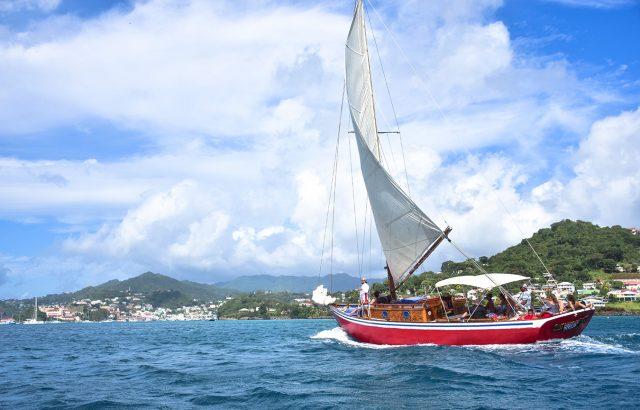 Savvy's Sailing Adventure Tours